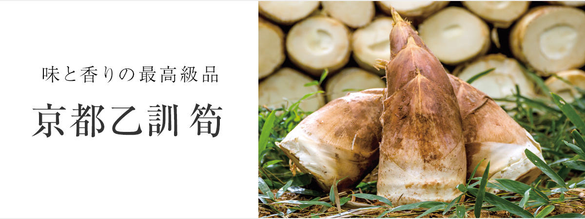 味と香りの最高級品 京都乙訓筍